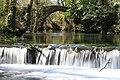 Río Belelle, Neda - 22 Mar 09.jpg