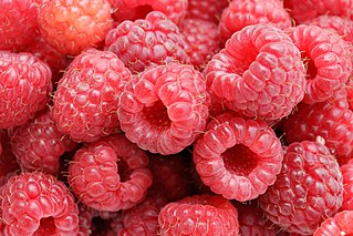 http://upload.wikimedia.org/wikipedia/commons/thumb/6/69/Raspberries05.jpg/320px-Raspberries05.jpg