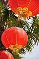 Red Lanterns for Chinese New Year KK 2.jpg