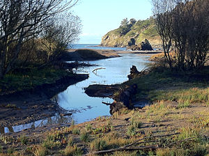 Redwood Creek (Marin County) - Redwood Creek flowing west to its mouth at Muir Beach (photo credit: Hugh Kuhn)
