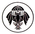Reparto L.R.R.P. - Long Range Reconnaissance Patrol.JPG