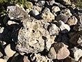Reste des zerfallenen Draugletschers aus der Eiszeit am Zwergohreulen Naturpfad in Köttmannsdorf, Kärnten.jpg