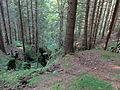 Reste eines mittelalterlichen Erzbergwerks im Oberharz 01.JPG