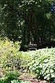 Rhododendronpark Bremen 20090513 090.JPG