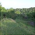 Rhymney Valley Ridgeway, Wern Ddu - geograph.org.uk - 457397.jpg
