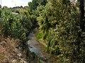 Rio Almonda em Torres Novas 5.JPG