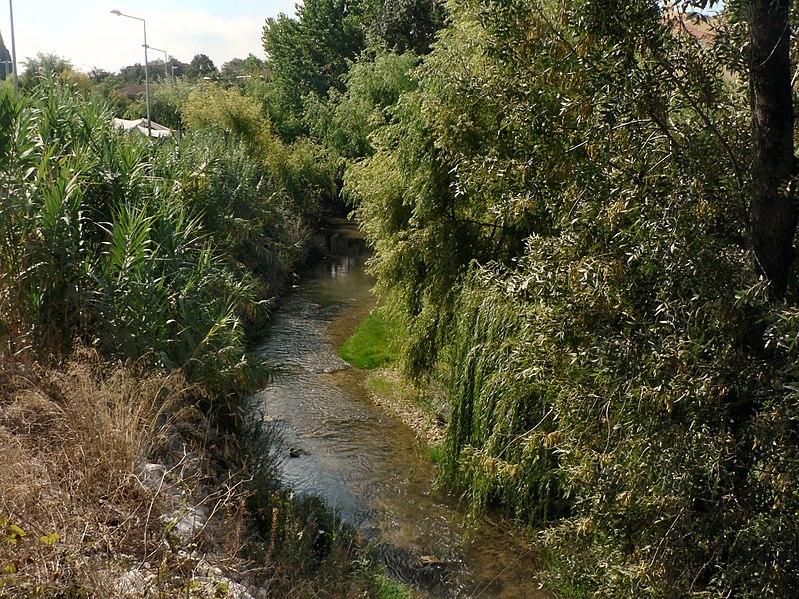 Image:Rio Almonda em Torres Novas 5.JPG
