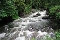 Rio Naranjillo P1010417mod.jpg