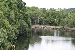 Boyle River (Ireland) - Boyle River at Knockvicar.