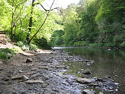 River Avon in Chatelherault Country Park.jpg