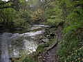 River Blyth Humford Woods - geograph.org.uk - 275395.jpg
