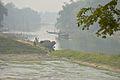 River Churni - Halalpur Krishnapur - Nadia 2016-01-17 8758.JPG