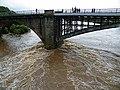 River Spey in Spate (5) - geograph.org.uk - 1473622.jpg