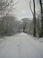 Road to Whitestripes Farm - geograph.org.uk - 97030.jpg