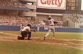 Rod Carew at Yankee Stadium.jpg