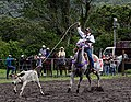 Rodeo Event Calf Roping 47.jpg