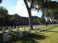 Rome War Cemetery - prato e mura P1060050.JPG