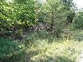 Roost-Warendin - Terril n° 136, Roost Lains Ouest (03).JPG