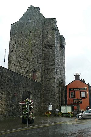 Roscrea - The Gate Tower of Roscrea Castle