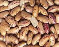 Rosecoco beans.jpg