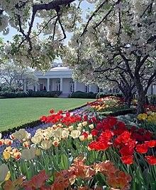 White House Rose Garden Wikipedia