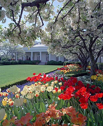 White House Rose Garden - The Rose Garden looking west towards the Oval Office.