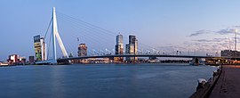 A panorama of the Erasmus Bridge and the River Meuse in Rotterdam