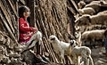 Rural life in Gilandeh, Kharajgil - 15 April 2018 01.jpg