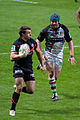 ST vs Harlequins - Match-16.jpg