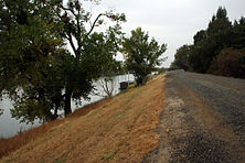 Sacramento River Levee.jpg