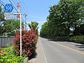 Saitamakendo 108 Niiza City2.jpg