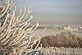Saldus in morning mist - panoramio.jpg