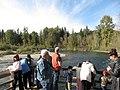 Salmon run at Adams River 2010 (5074665454).jpg