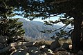 San Bernardino National Forest (4120379506).jpg