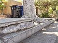 San Fernando Valley sidewalk vs. tree 2015-05-02.jpg