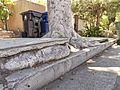 San Fernando Valley sidewalk vs. tree 2015-05-02.jpg