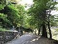 Sando of Yomeiji Temple.jpg