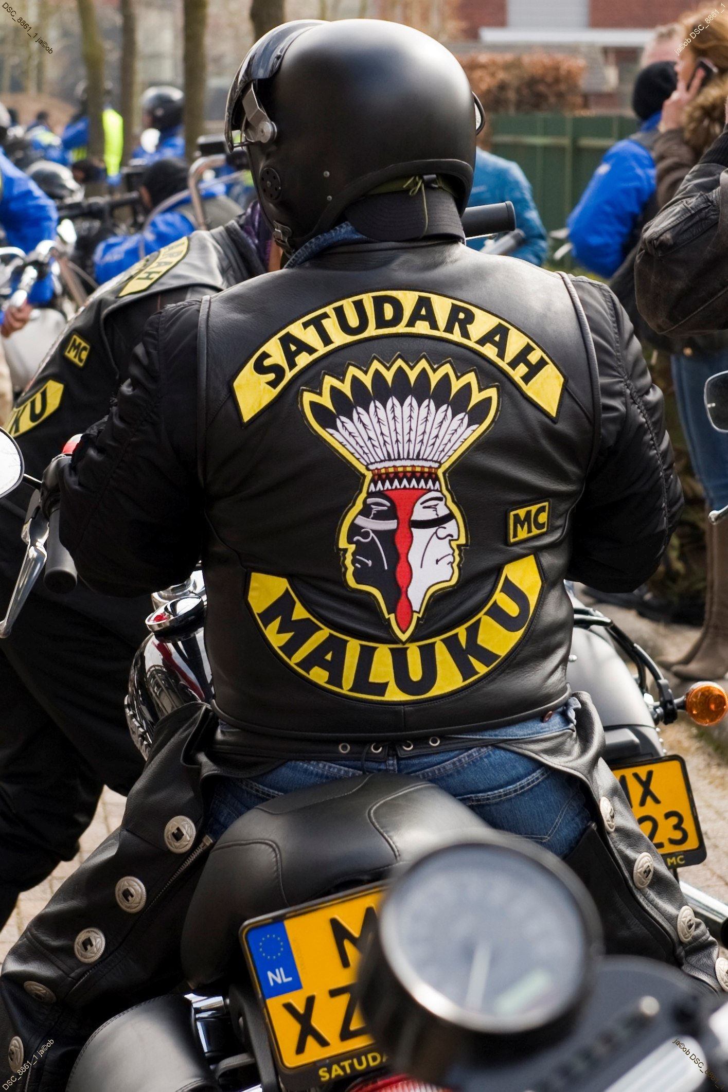 Satudarah - The complete information and online sale with free
