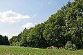 Schleswig-Holstein, Poyenberg, Hennstedt, Landschaftsschutzgebiet Joachimsquelle NIK 6879.JPG