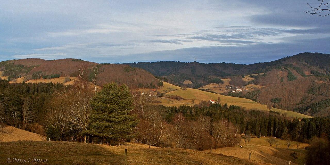 Schwand-Ried - panoramio.jpg