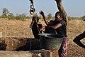 Senegalese women gardeners 2.jpg