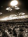 Sepia Dunes (5995372726).jpg