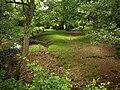 Shady grove by Haywards Water - geograph.org.uk - 1365941.jpg
