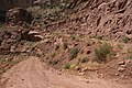 Shaffer Trail 2005-07-26 (3710805921).jpg