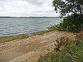 Shoreline, Grafham Water - geograph.org.uk - 1495980.jpg