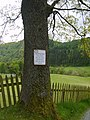 Sign on a Tree - geograph.org.uk - 1323238.jpg