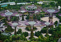 Singapore Gardens by the Bay viewed from Marina Bay Sands 09.jpg