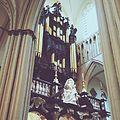 Sint-Salvatore Kerk organ 01.jpg
