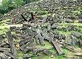 Situs Megalitikum Gunung Padang, Cianjur - panoramio (17).jpg