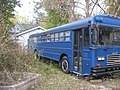 Sixth Street West 1021 garage with school bus, Bloomington West Side HD.jpg